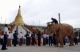 21-10-10 Mahouts train Myanmar's fifth white elephant during a lavish welcome ceremony for the rare elephant at Uppatasanti Pagoda in Naypyitaw, Burma.