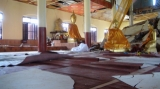 An earthquake damaged the monastery in Tarlay, Easter State, Burma.