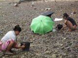 Burmese workers are working beside the beach in Ranong, Thailand.