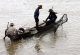 Fishermen catch fishes in a river in Nyaung Tone, Burma Irrawaddy Delta, about 60 miles southwest of Rangoon, Burma.
