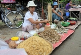 Vendors sell dry fishes at market in Nyaung Tone, Burma Irrawaddy Delta, about 60 miles southwest of Rangoon, Burma.