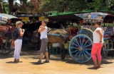 01-09-12 - Photo Jpaing Tourists stroll past traditional horse and buggy transport in burma