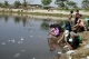 Buddhist devotees release fishes as they visit Thardugan Pagoda on Myanmar new year day Wednesday, April.17, 2013, in Yangon, Myanmar