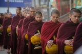 Monks on their almsround in Rangoon on Jan 17, 2015. ( Photo - JPaing / The Irrawaddy )
