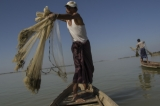Two fishermen casting fishing net to where the Irrawaddy dolphin makes signal. (Photo - teza hlaing/ The Irrawaddy)