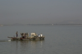 A local vessel with cows crossing Irrawaddy River. (Photo - teza hlaing/ The Irrawaddy)