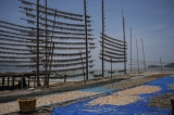 Fish-drying stands at at Andin fishing village (Photo: Tin Htet Paing / The Irrawaddy)