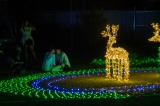 DN Development Group illuminated People's Park in Rangoon with over 60 light installations formed from more than 70 million LEDs for the first Myanmar International Lighting Festival on Sunday night. The festival continues until April 30. (PHOTO - NAING LIN SOE / THE IRRAWADDY)