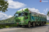 A cattle export car, which carried cows, was seen on Naung Cho-GokeTwin highway road, Shan State on October 31, 2019.  Photo - Htet Wai/ Irrawaddy